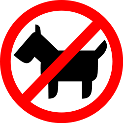 no-animals